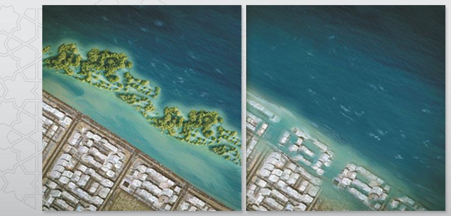 Environmental Atlas Of Abu Dhabi Emirate Mangroveforests